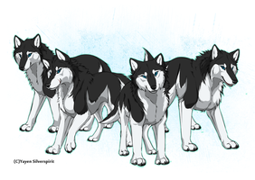 the Penguins of Madagascar as wolves by Silver-spirit666