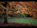 Autumn Falls by GMCPhotographics