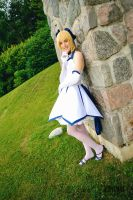 Saber-lily 10th anniversary 7 - Leaning by simakai