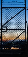 Open the gate. by chivt800