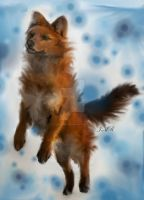 digital dhole painting by Canis-Simensis