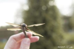 maple seed dragonfly by million-dandelions