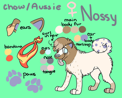 Nossy Ref by CursedFire