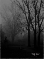 he is the mist by Kidy-kido