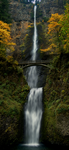 Multnomah Falls Oregon by Alegion