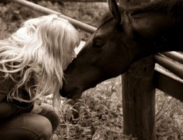 Kiss for filly by Pirata1987
