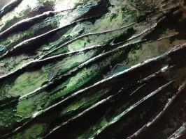 Collapse Of The Wave Function by Angus4greenie