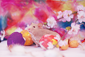 Happy Easter Hamster III by whensummerends