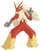 Pokemon: Blaziken by Kidel
