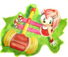 Amy The Hedgehog by RottenEggCreations