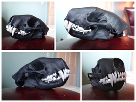 Skunk Skull by aquiafin