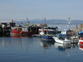 Cromarty Harbour by piglet365