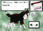 Shadow Ref Sheet by DoubleTroubleWolves