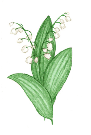 Lily Of The Valley by Ode-Lia