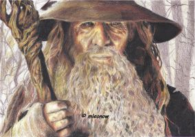 Gandalf the Grey by mleonow