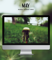 May by 9dZign