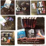 Final Day to enter by give away by NightFuryTail