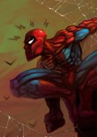 Spiderman by MightyMoose