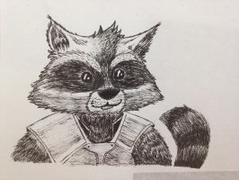 Rocket Racoon by TinyNerdGirl