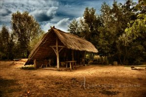 :: Prehistoric village :: by Liek