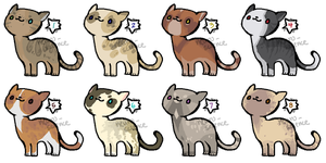 Kitty adopts - 4/8 open by neuro-science