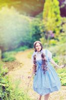 The Wizard of Oz- Dorothy Gale 12 by Raskolnikova-Sonya