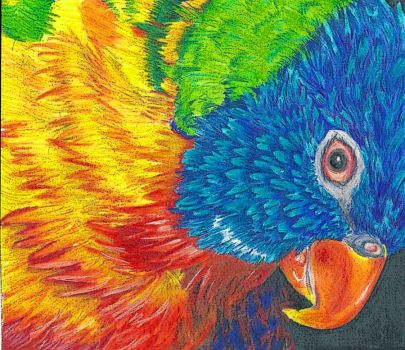 Rainbow Lorikeet 2 by toyas-world