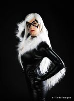 Black Cat - Sultry Pose by Kyatto
