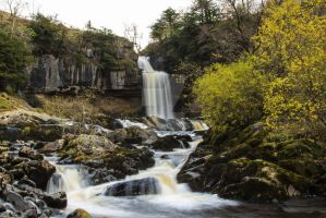 Thornton Force by GMCollins