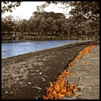 Obligatory Saturated Autumn 2 by TheFulkrum