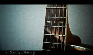 Acoustic neck by 10thapril