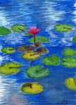 Water Lily by Cindy-R