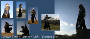 Armour Pack -- Greatest Hits by Cobweb-stock
