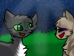 Crowpaw X Duskpaw - Counting Stars by Ask-Eclipse-Pony