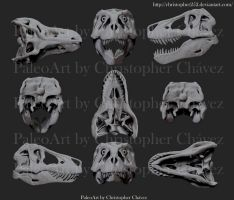 Skull T.rex Sue by Christopher252