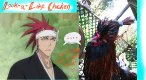 My Rooster is A COSPLAYER by SavedChicken