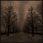 Dark lonely path by Baron-of-Darkness