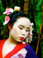 Beauty of a Geisha 2 by milesgore