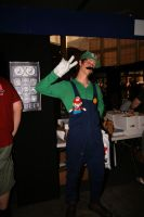 Luigi Cosplay by Navalius