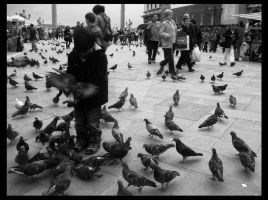 :playing with pigeons: by iv-mango