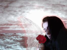 My Angel by TormentedSorrows