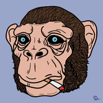 Chimp by NeSArts