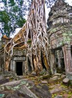 Cambodge by Gazounette