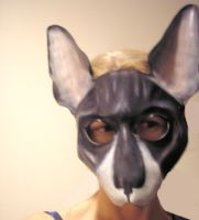 Exotic Cat Leather Mask by teonova