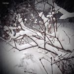 Quand neige l'hiver. by hyneige