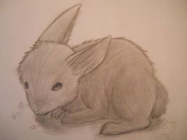 Pencil Rabbit by LimitlessXArt