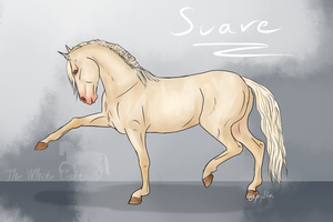 Suave - old by The-White-Cottage