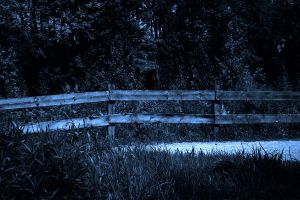 Dark Fence Background by Limited-Vision-Stock