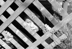 Through the fence by Aphoticbeauty