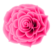 Pink Rose STOCK by venicet